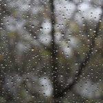 В воскресенье в Эстонии будет дождливо