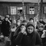 Открылся интернет-портал о преступлениях нацистов в Псковской области