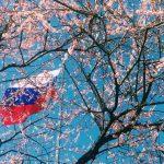 Онлайн-форум посвятят российско-японскому сотрудничеству