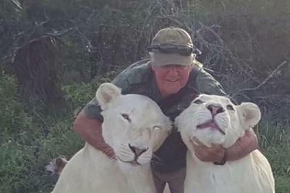Львицы заигрались и убили мужчину, который спас их много лет назад