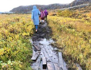Александр Корнилов: в Арктику поедут любознательные чудаки и экстремалы-адреналинщики